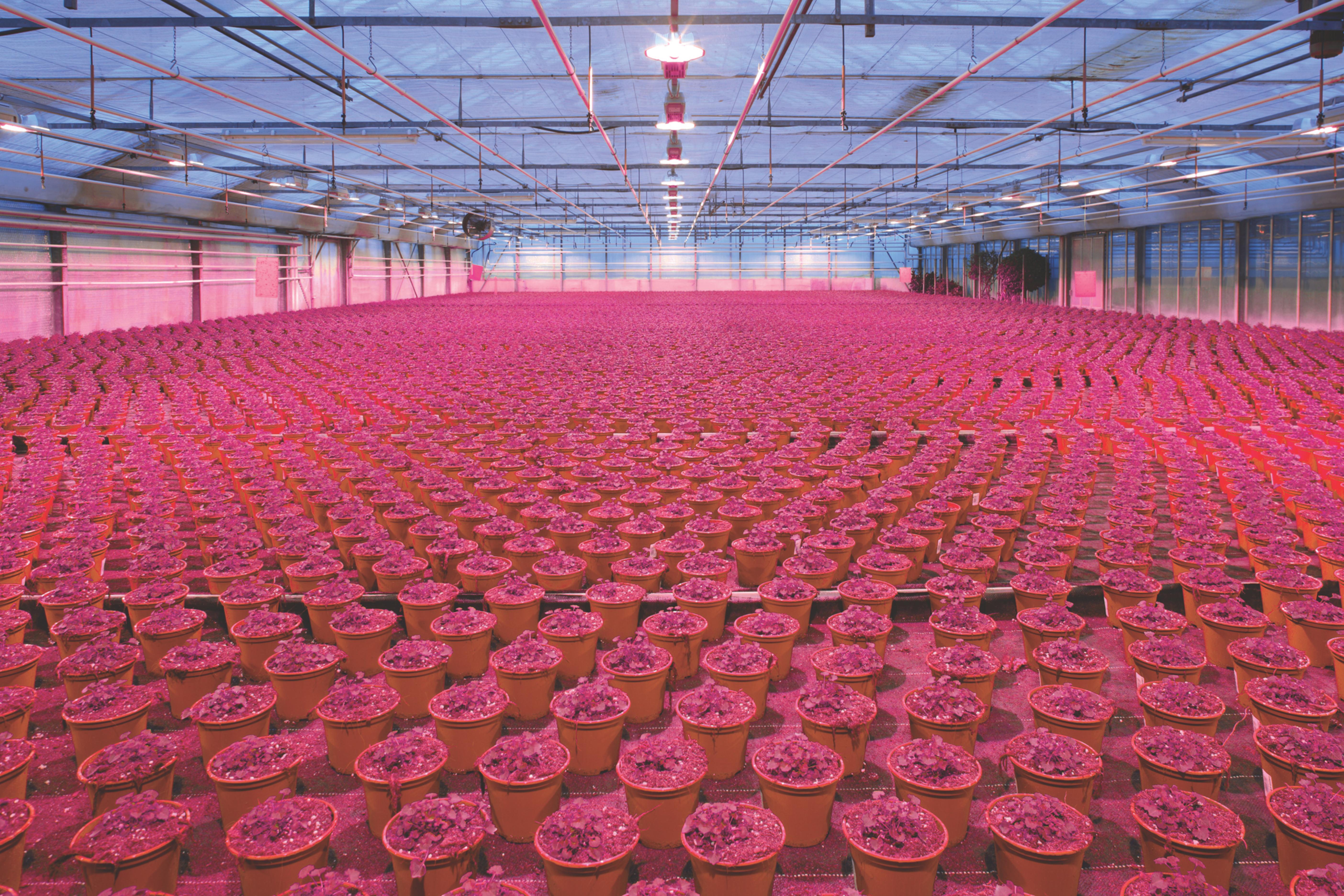 Hohes Energiesparpotenzial durch LED-Einsatz