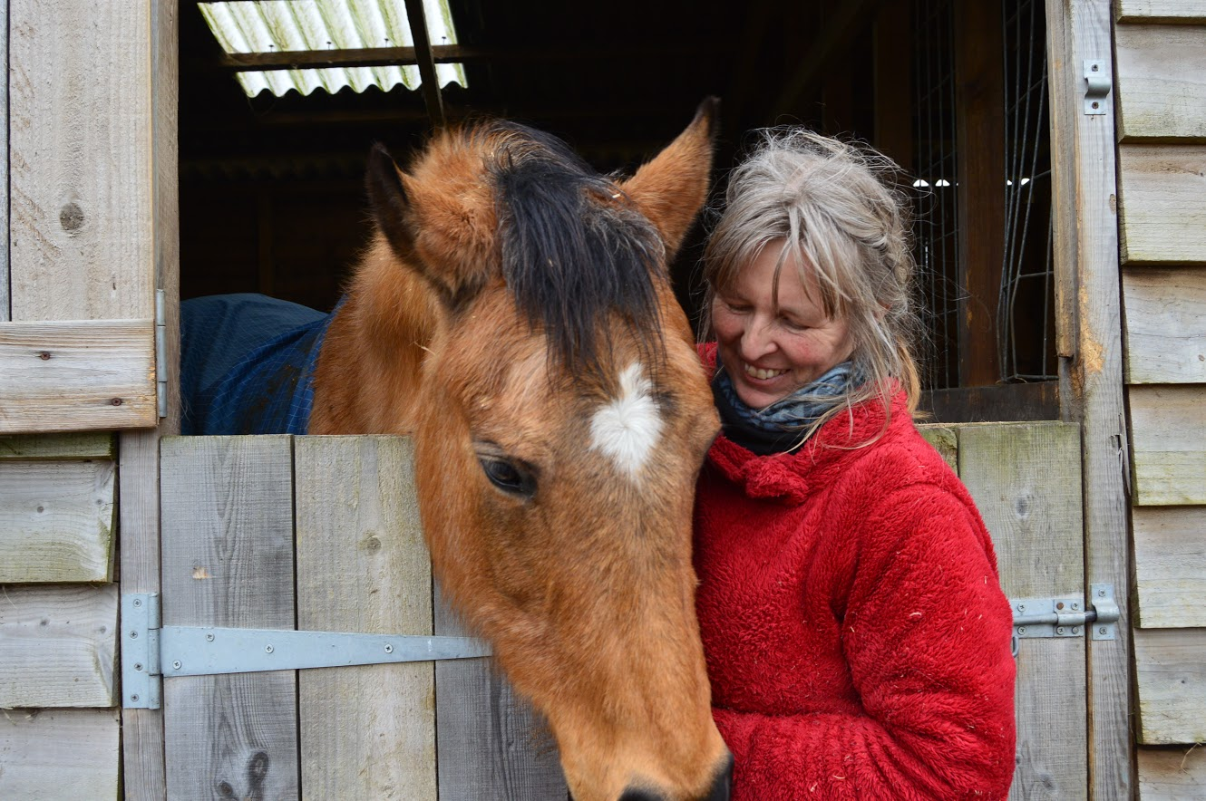 Horses Helping People - Horse Therapy in South England